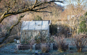 jardin pour l'hivernage